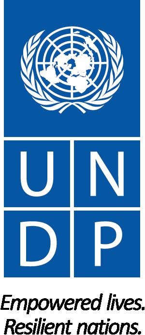 logo undp 300