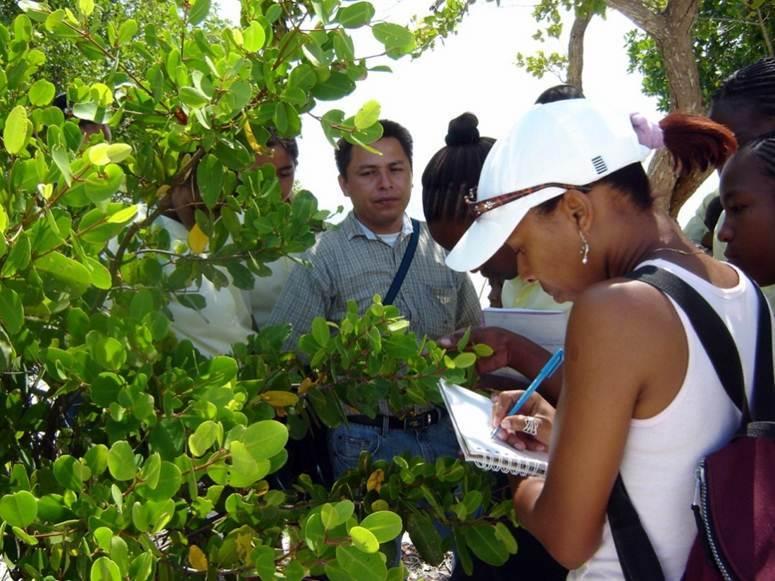 Belize_IV